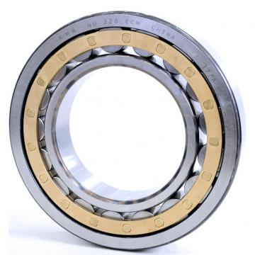 80 mm x 110 mm x 19 mm  INA SL182916 Cylindrical Roller Bearings